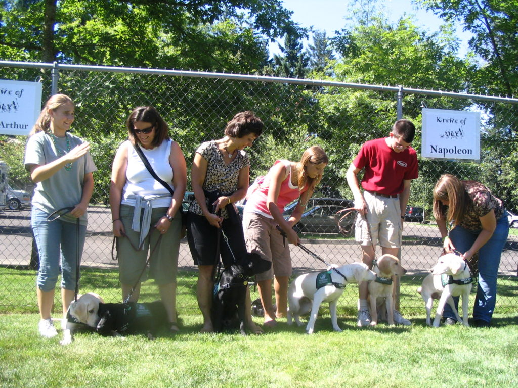 Oregon Guide Dogs for the Blind Funday. All 6 of Fanstasia Male pups second A litter  left to right - Ashurst, Andera, Abraham, Anders, Admiral, Albion